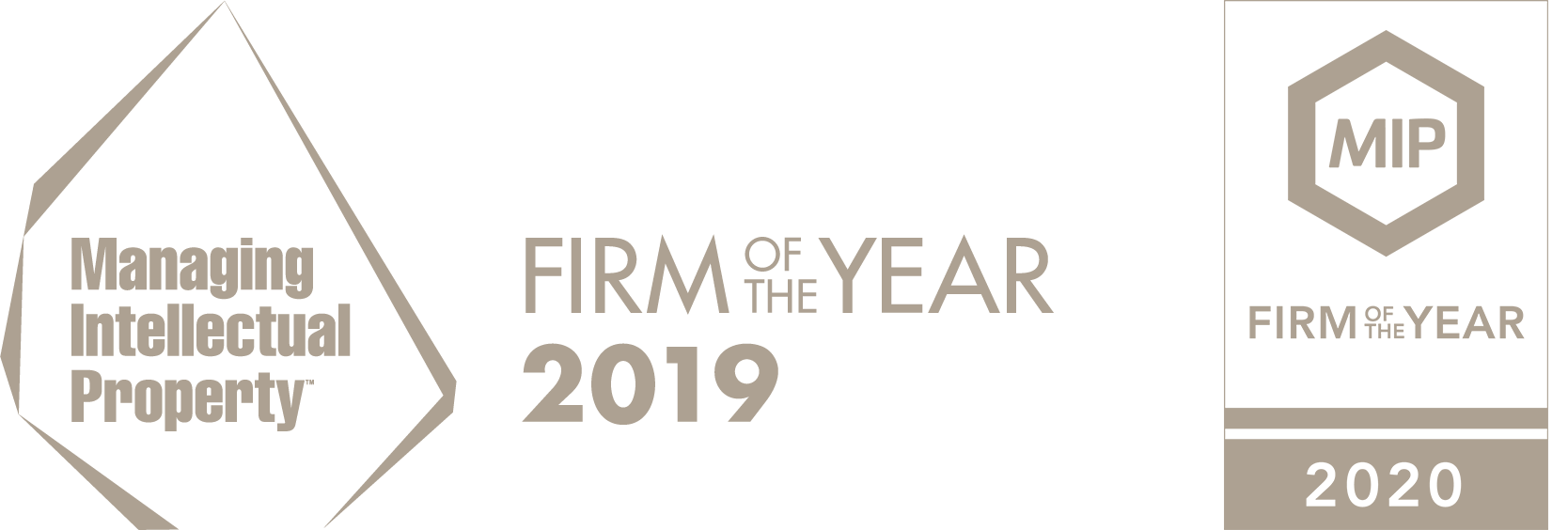 Puchberger & Partner - Firm of the Year 2019-2020